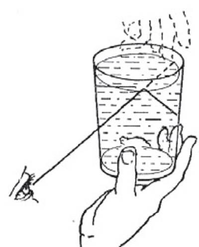 Délibáb egy pohár vízben: teljes visszaverődéskor a víz felszíne tükörként viselkedik, amelyben alulról nézve kezünk fordított állású képét is megláthatjuk