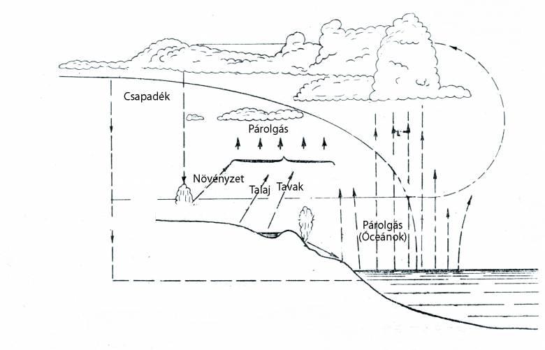 A körforgás során évente mintegy 500 ezer köbméternyi víz halad át a légkörön a párolgás és lecsapódás következtében • Kónya Ádám rajza