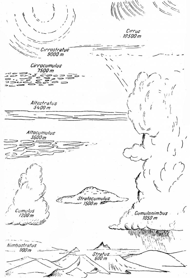Kónya Ádám rajza