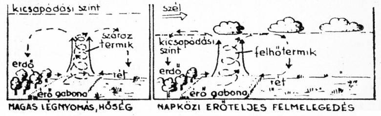 A tornyosuló gomolyfelhők alapja csaknem teljesen sima, és jelzi a vízpára kicsapódásának szintjét • Kónya Ádám rajza