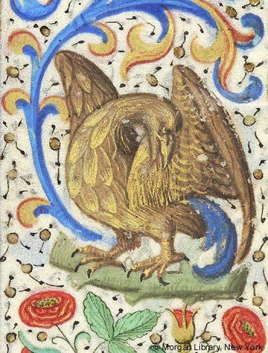 A madarak királya, a sas, egy reneszánsz kori francia imakönyvben (1460) • Kép forrása: ica.themorgan.org