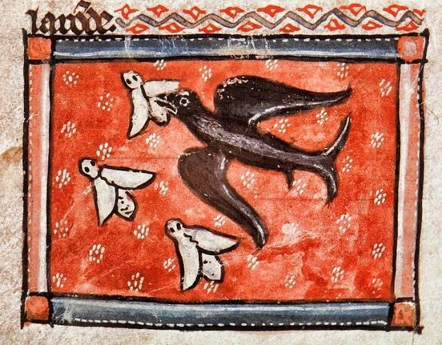 A tavasz első visszatérő vándormadara, a reményt és újjászületést jelképező fecske (A szerelem bestiáriuma) • Kép forrása: Flickr.com