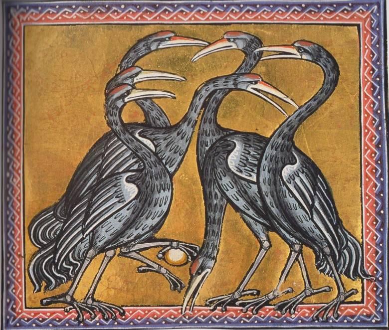 Az éberséget és hűséget szimbolizáló darvak, köztük a karmai közt követ tartó vezérdaru (Aberdeen bestiárium, 1200 körül) • Kép forrása: solomonsblondes.blogspot.com