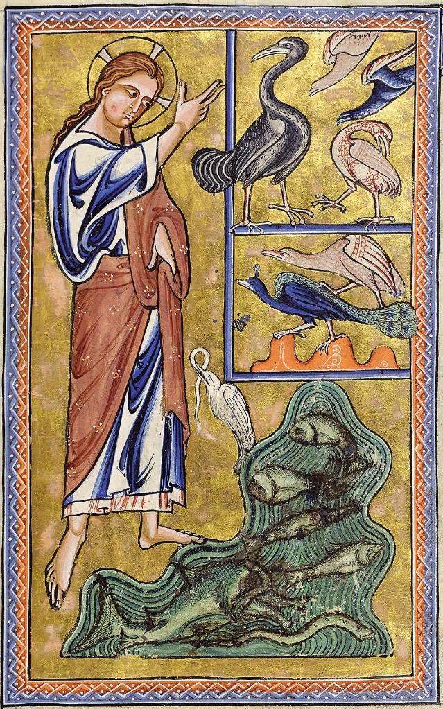 A halak és a madarak teremtését illusztráló miniatúra az 1200 körül írt (a 16. században VIII. Henrik tulajdonát képező) Aberdeen Bestiáriumban • Kép forrása: wunderkammer.blog.hu