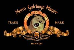 Az oroszlán diszkrét bája