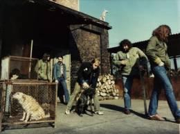 6. Programozott szórakozás – tilos a rock!