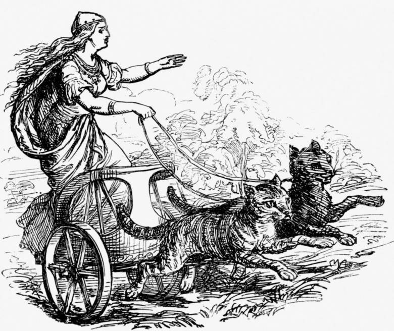 Frigg (Freyja), a szerelem és a házasság istennője macskák vontatta kocsiján (19. századi metszet) • Forrás: Britannica.com